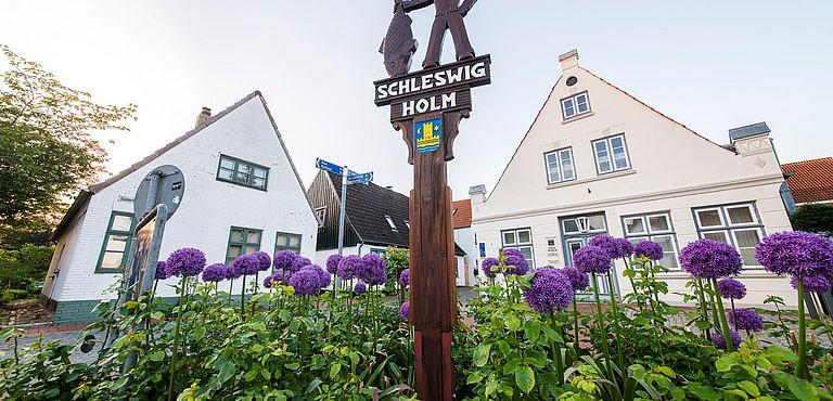 Stern-Tour um Schleswig